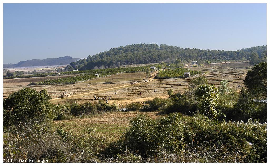 Pindaya 2006