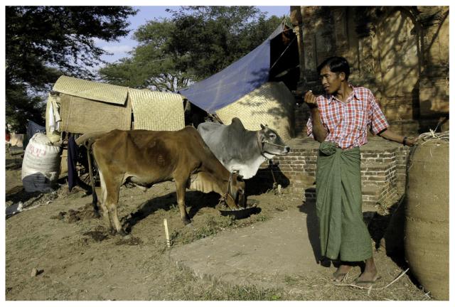 Bagan Fête Ananda
