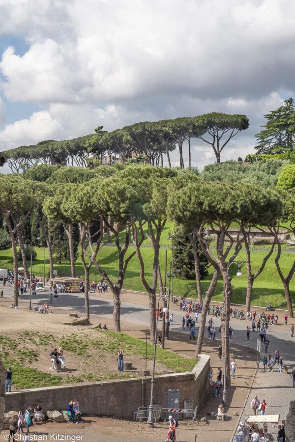 Via di San Gregorio prise depuis le Colisée en direction du Palatin